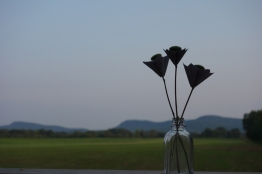 paper-flower-workshop-knack-amberladley7